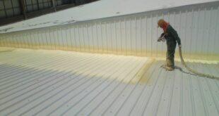 مشاكل السقف الشينكو